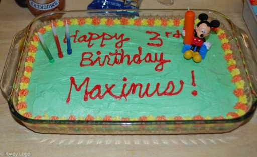 MaximusBirthdayBlog-0715
